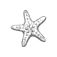 Couture Creations Seaside & Me Mini Stamp Starfish