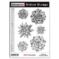 Darkroom Door Cling Rubber Stamp Set Succulents