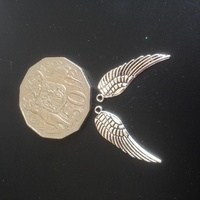 Metal - Wings 2pc