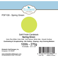 "Elizabeth Craft Designs Soft Finish Cardstock 12x12"" 10pk Spring Green"